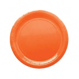 Arancio piatto 24 cm ecolor in carta 25 pz